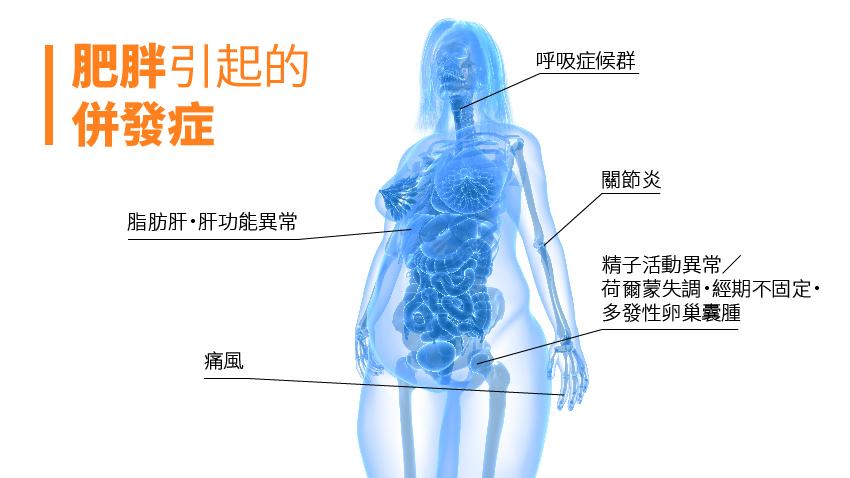 讓人瘦不了!竟是缺乏維生素B群與鈣
