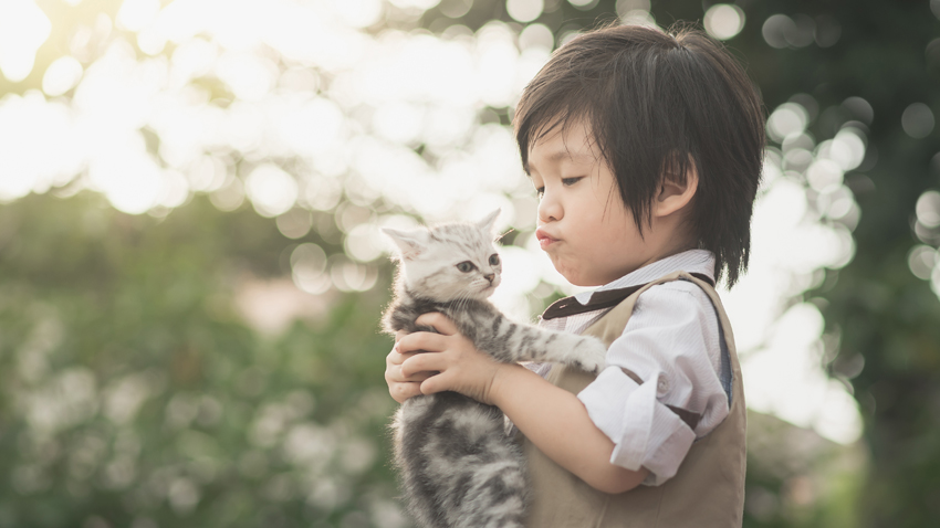 寵物能防過敏?而且一次要養2隻才有效