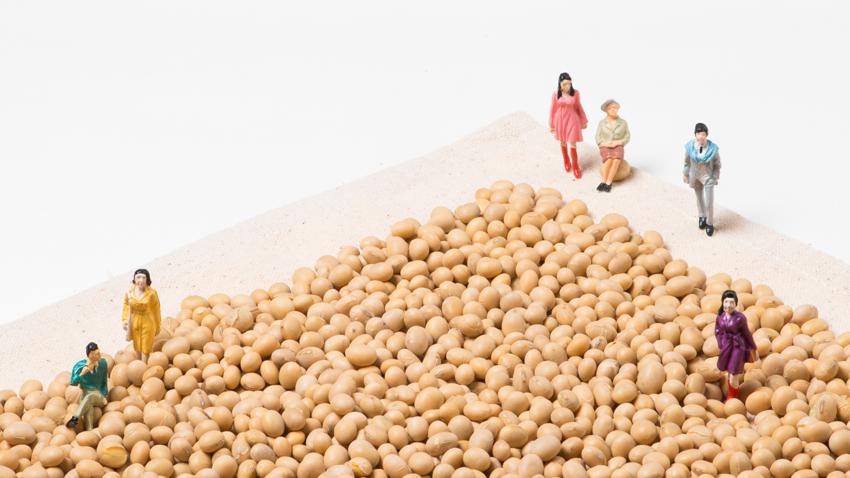 大豆異黃酮,緩解更年期無效?