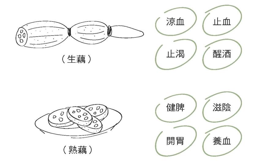 健脾養胃聖品 這碗蓮藕豬肉湯還能養血補氣