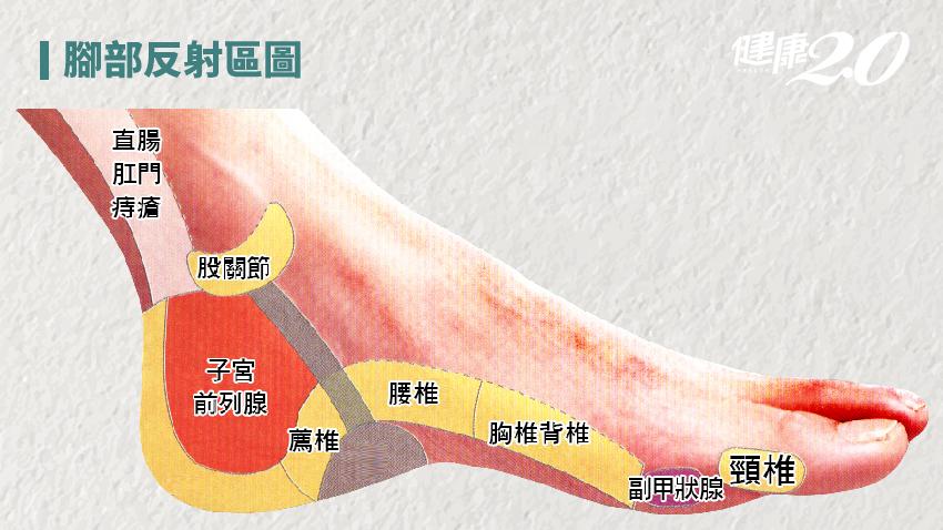 經常腳抽筋?2種中藥材治抽筋很有效