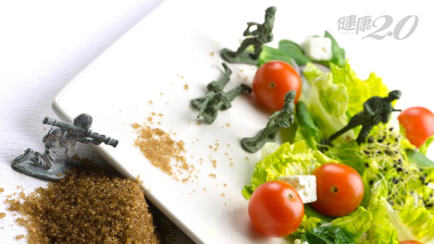 搞懂基礎代謝,不挨餓也能輕鬆瘦、不復胖