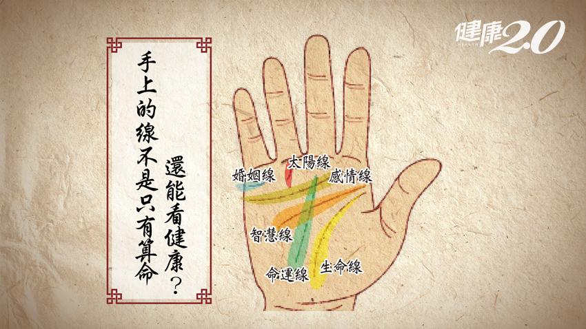 掌紋看健康!快看你的「生命線」有多長,原來它代表…