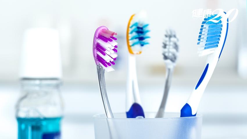 認真刷牙還不夠!醫師:選這種牙刷才能徹底清潔