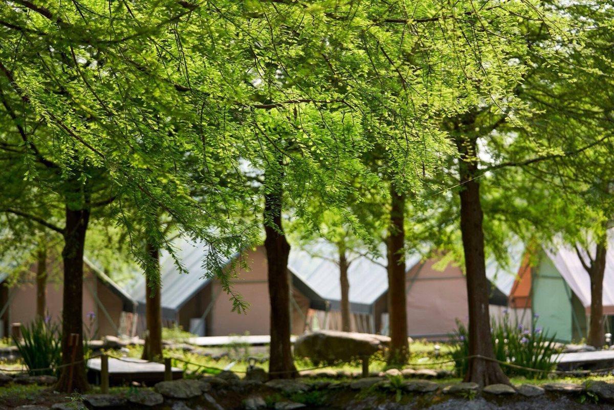 被綠意環繞的「那一村」,自然怡人的氛圍讓人一進到園區就身心得到解放。(圖片來源:那一村)