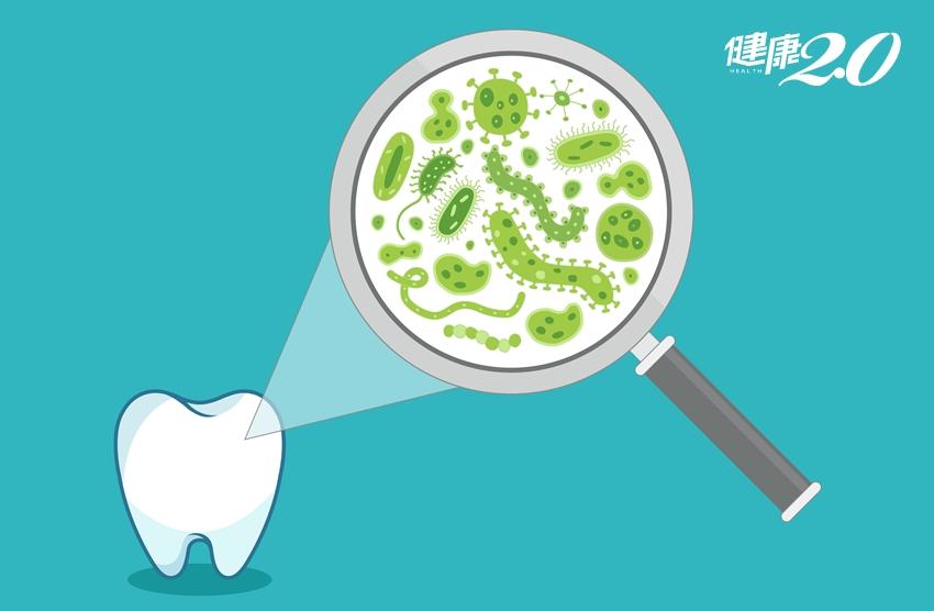 先吃早餐還是先刷牙?醫師公開「每日潔牙SOP」