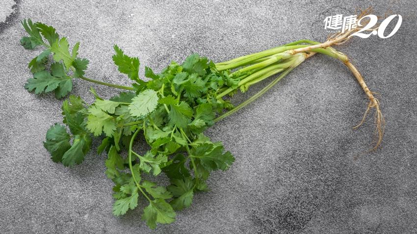 香菜是重金屬解毒劑:加這些蔬果打成汁,食療價值最高!