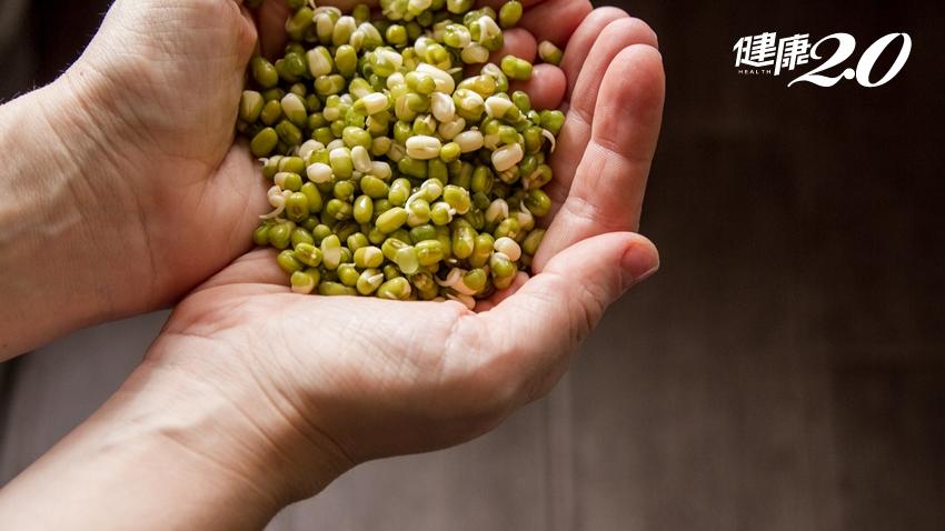 對抗昂貴菜價,你只需要一把豆子!在家種豆芽菜好簡單