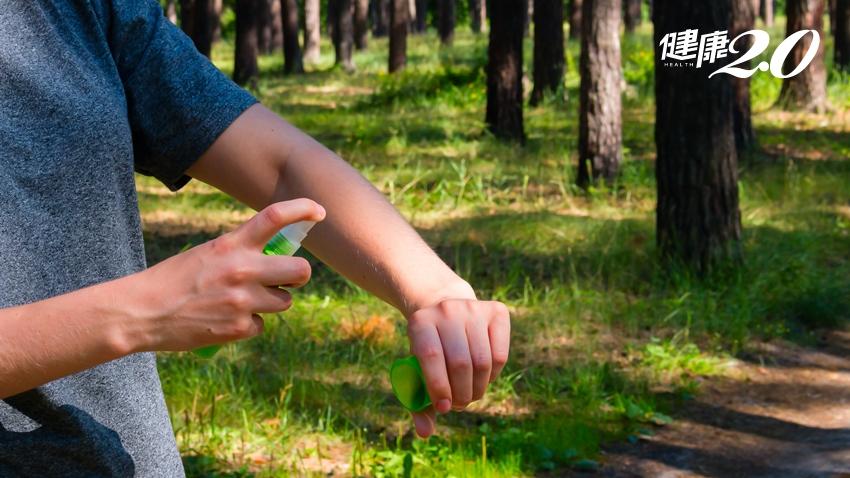 防曬和防蚊哪個先擦?捕蚊燈怎麼擺?專家教你有效防蚊