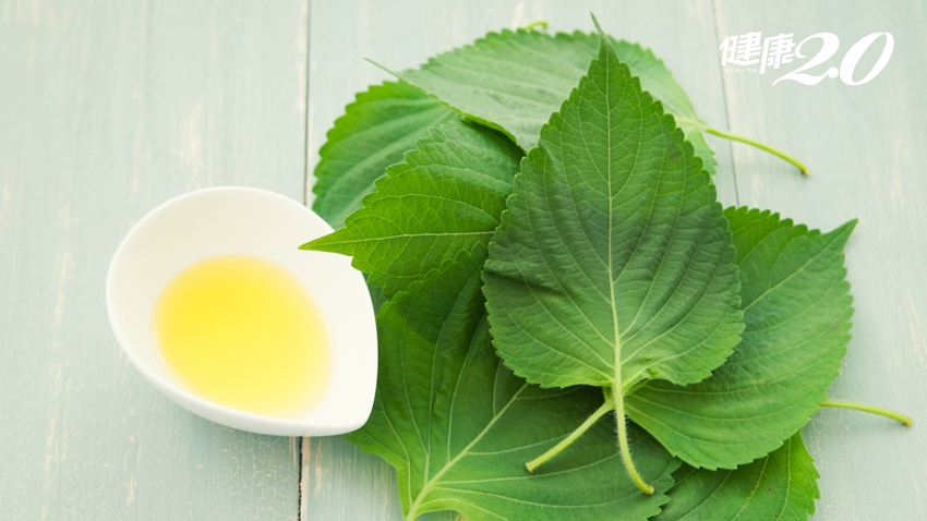 吃對油,愈吃愈健康!日本研究「這個油」防腸癌、乳癌