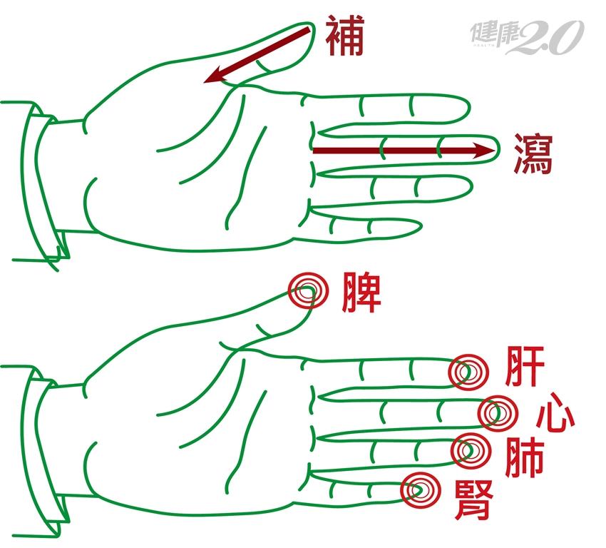 微循環不好,身心腦都受害!專家傳授「補五臟」手指按摩法