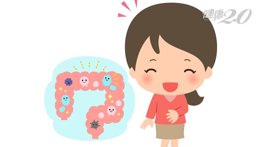 都對腸道有益!3大排便幫手「益生菌、酵素、纖維質」差在哪?