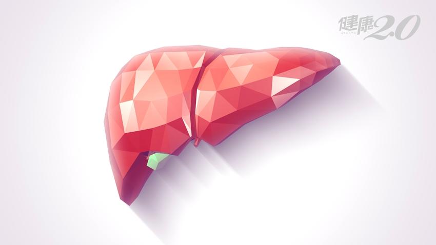 脂肪肝不管小心變肝癌!不菸酒、不熬夜還是有脂肪肝?醫師解惑