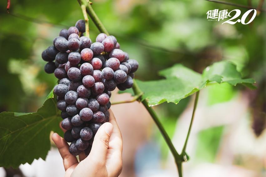 6種「超強抗病力」水果怎麼挑選?如何清洗?