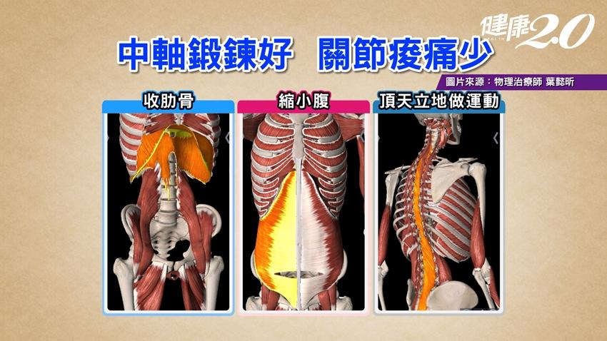 深蹲傷膝蓋是因為做法不對!物理治療師教你正確深蹲
