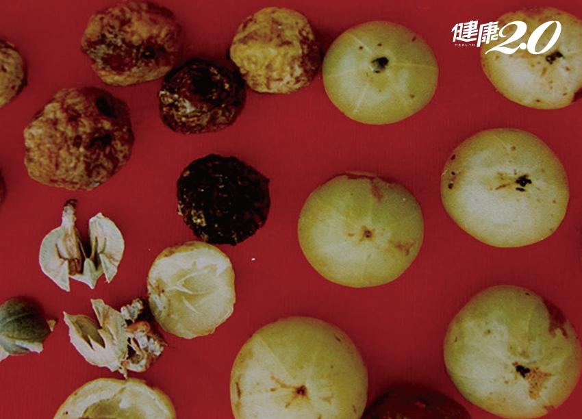 阿嬤級零嘴「餘甘子」 中醫讚它消食健胃、科學證實能消疲勞!