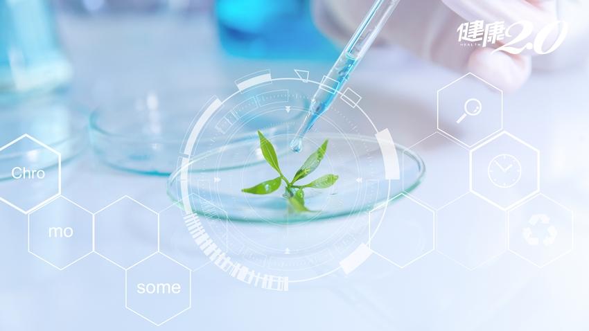 「這種化學物質」是強力彈藥,毀滅癌症同時強化正常細胞!
