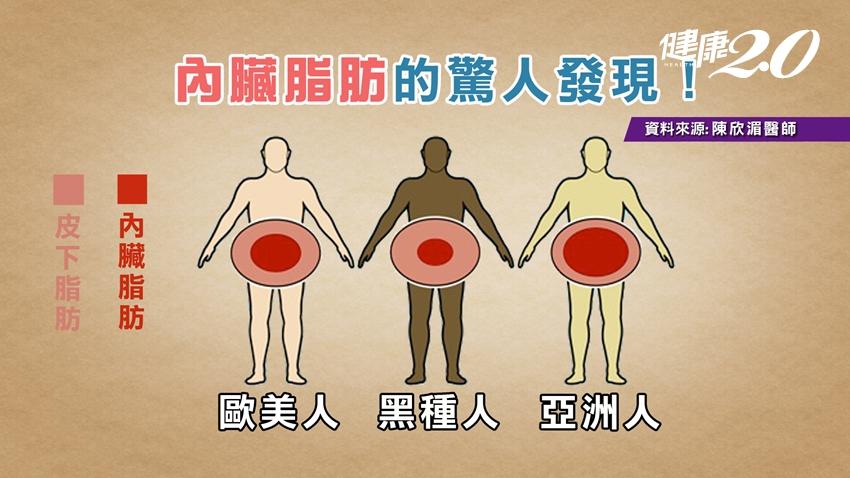 內臟油滋滋,全身器官很危險!糖尿病、腦中風、癌症都來敲門