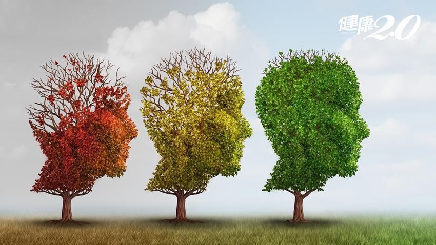 起因都是大腦退化…巴金森氏症、阿茲海默症如何分辨?