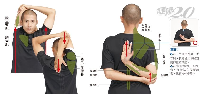 正確拉筋肌肉長度變1.5倍!「拉筋伸展操」5式讓身心體態都慢老