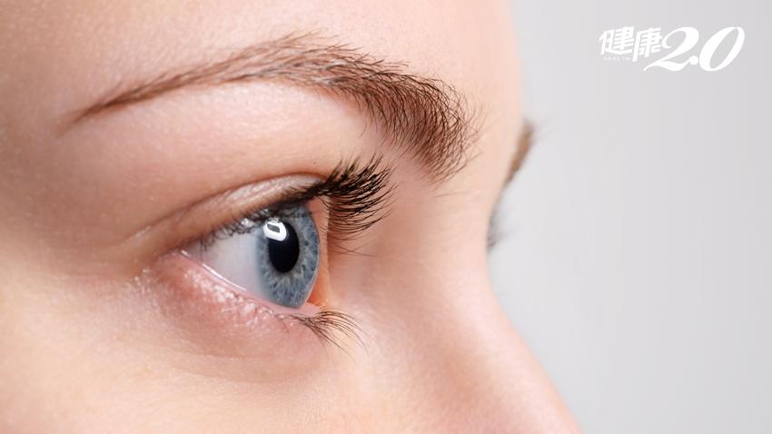 比藍莓、紅枸杞更厲害!「花青素」含量超強食物幫你護眼