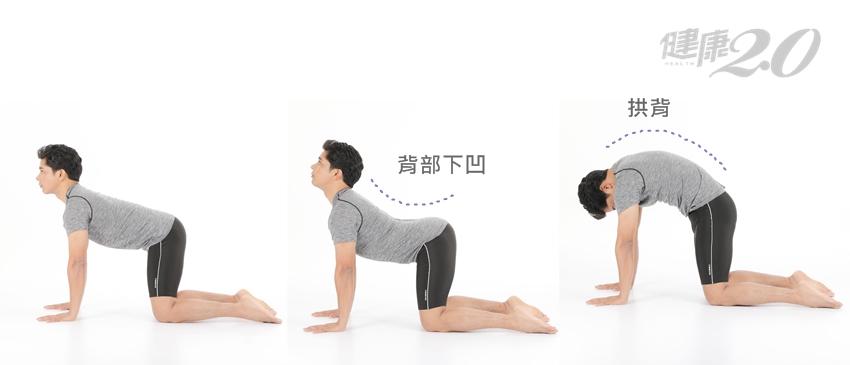 3招「動物瑜伽」,解除惱人下背痛!