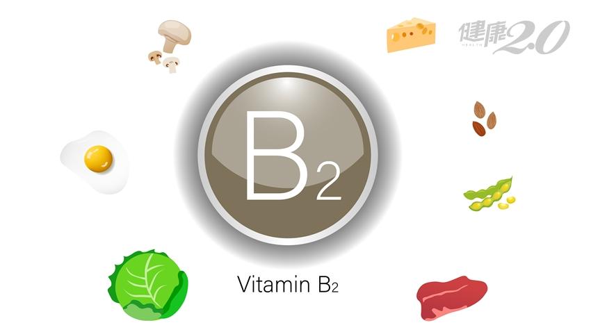 維生素B2助減重、防嘴破!4種食物這樣搭 B2營養加倍