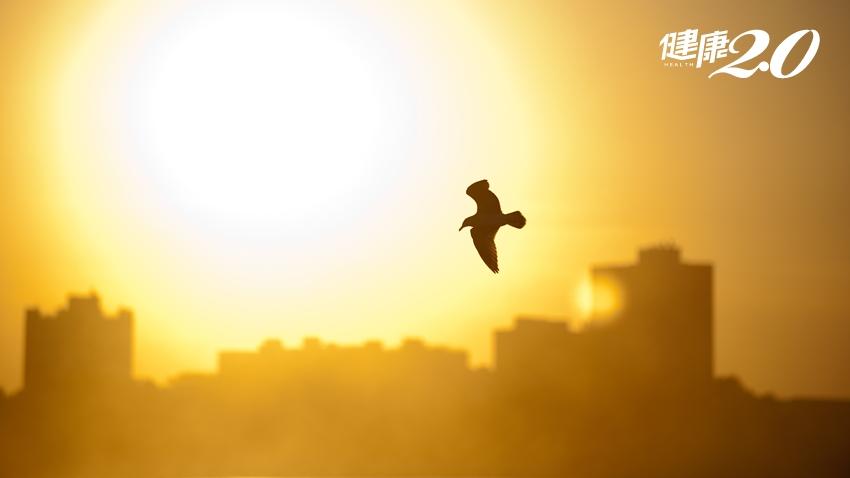 台灣夏天濕度高達80%!濕氣入侵,當心「疾病四大天王」悄悄來襲
