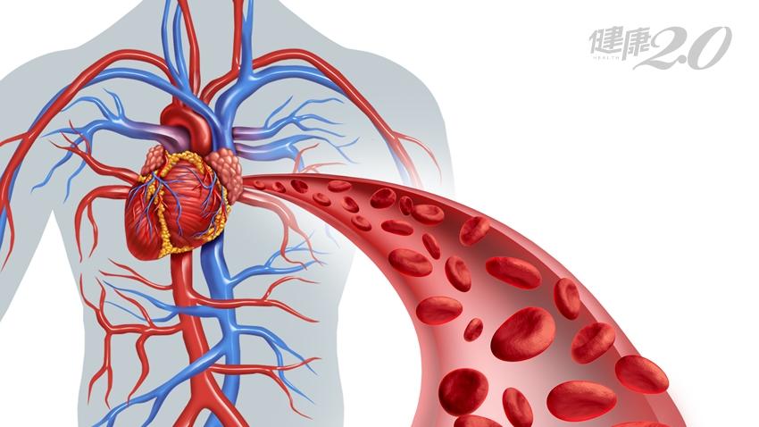 酵素有益心血管!要分解脂肪、防血栓 多補充「脂肪酶」