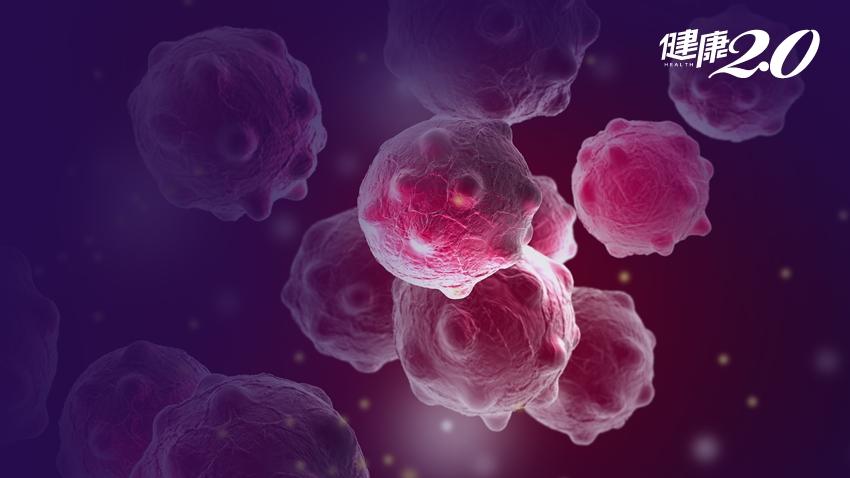 找到乳癌新制藥物!交大北醫「膜蛋白癌症追蹤地圖」創全球首例