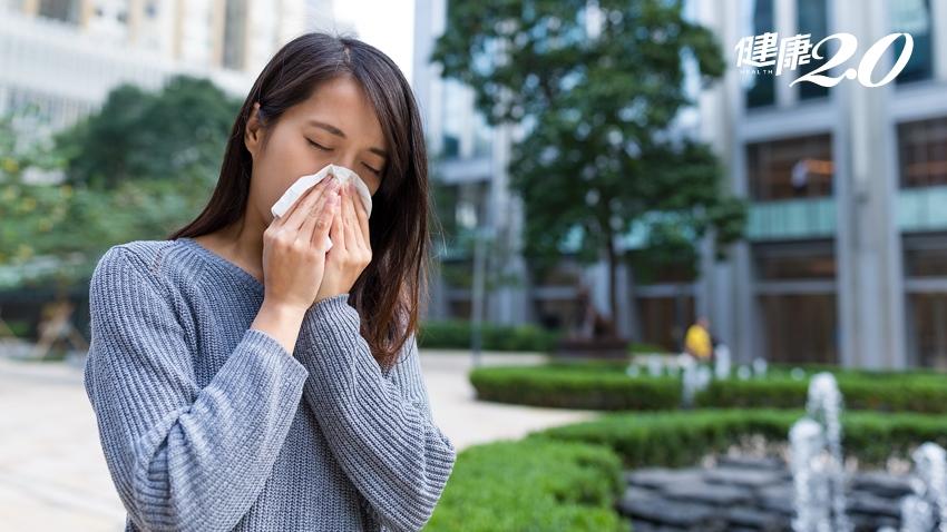 別把「秋季過敏性鼻炎」當成「假感冒」 3重點分清楚
