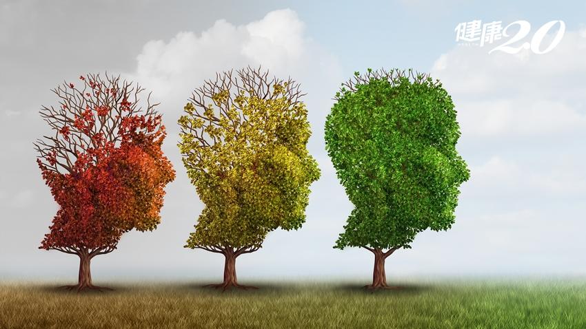 預防阿茲海默症 美國醫師建議常吃、少吃和「最好別碰」的食物