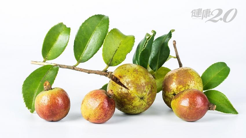 「植物黃金」苦茶油:顧胃護心又消炎!品油師教你這樣用 才有大功效
