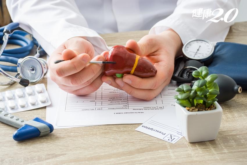 遠離4個危險因子 不怕肝癌來敲門、肝臟可以用到老!