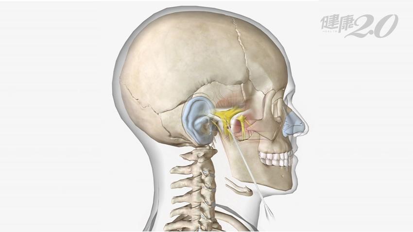「痛到想死」他的臉如電擊達10年 三合一新療法解決三叉神經痛