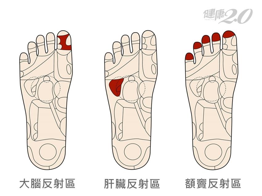「冬轉春」溫腎養肝並重:泡腳刺激足底反射區,4個穴位也暖了