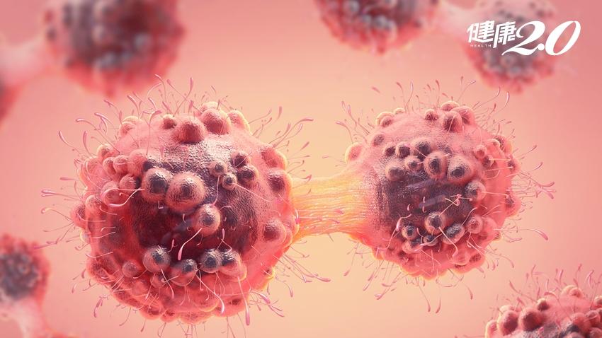 癌細胞愛吃「糖」?癌友別碰「醣」?營養師:多利用它就是在防癌