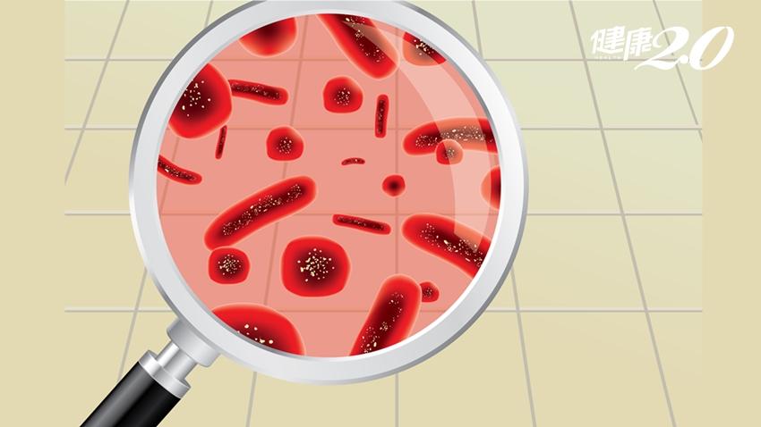 食物掉地上,3秒內能吃?重症專科醫師:病菌都在這裡!