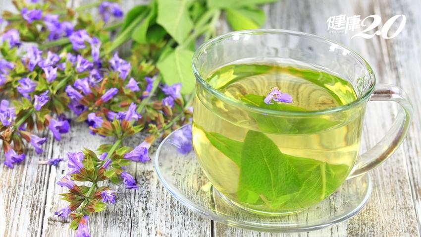 鼠尾草平衡荷爾蒙、緩解更年期症狀 搭配7種香草配角更好喝