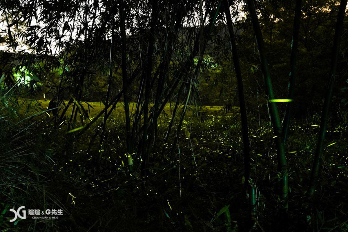 好拍又好玩!日月潭一級玩家5行程:武俠風碼頭美拍、獨木舟遊湖、竹林賞螢火蟲