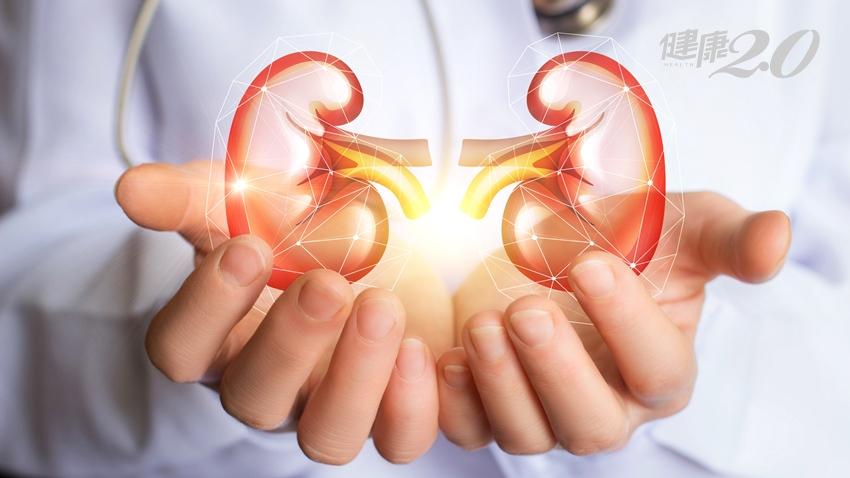 我都沒有不舒服為何會有腎臟病?醫師教你保養不敗腎