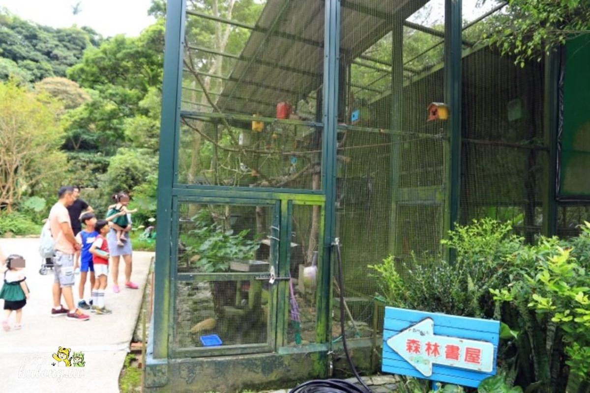 玩不膩!新竹親子放風6行程:看河馬刷牙、陪草泥馬散步、溜彩虹滑梯