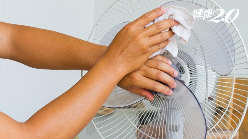 小心「電風扇」變危險電器!不要只是清灰塵 「這裡卡住」恐會起火