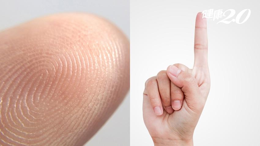 冷知識!指紋不只能辨識身分,還有2個隱藏版功能