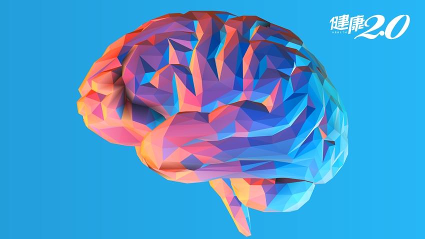 上了年紀,也能鍛鍊腦力!腦醫學博士:吃這些「提高血清素」護腦