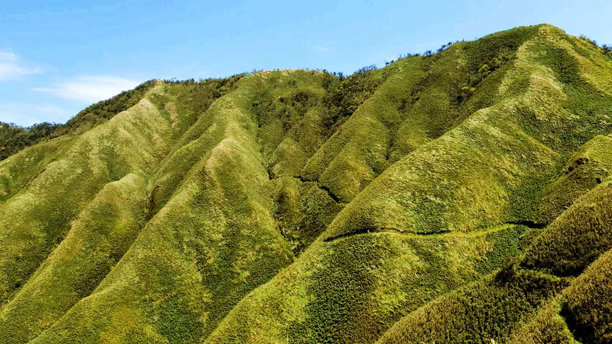 網美們你確定要爬「抹茶山」?和小林賢伍一起賞抹茶冰淇淋,發現4個真相