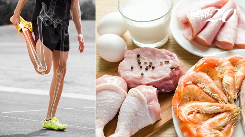 補鈣不補蛋白質,小心骨頭更脆弱!這2餐「蛋白質吸收率」最好