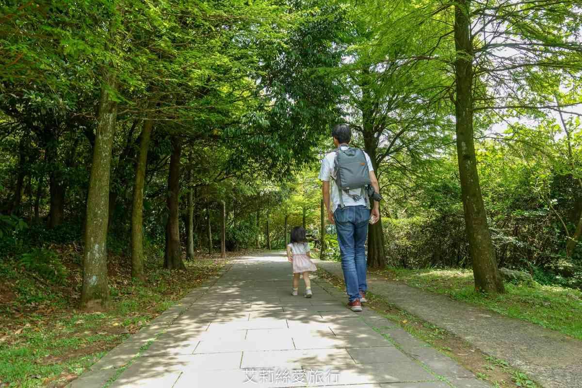 【全台親子步道17選】好走不累,還可賞美景!森林祕境、無敵海景、清涼瀑布全都收