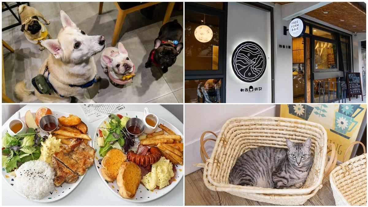 貓狗陪吃!北中南4間寵物餐廳:法鬥甜點店、貓咪咖啡廳、黃金獵犬居酒屋