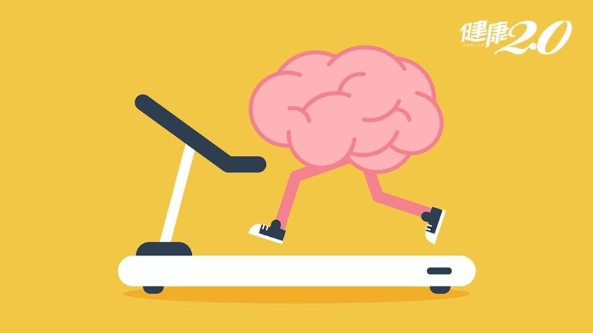 哈佛醫師推「天然健腦丸」!維持大腦平衡,可以改變你的一生
